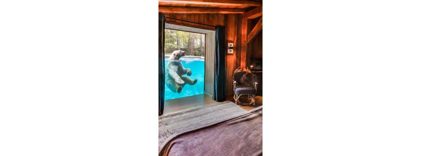 Zoo de la fleche lodge for Chambre zoo de la fleche