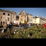 Entre Cours et Jardins © Ville du Mans Gilles Moussé