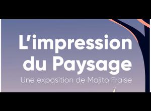« L'IMPRESSION DU PAYSAGE » PAR MOJITO FRAISE