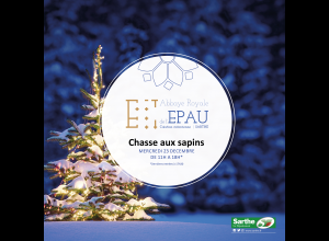 CHASSE AUX SAPINS