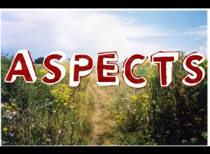 IMPACT : ASPECTS