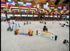 BOULERIE JUMP - EUROPEAN HORSE CENTRE