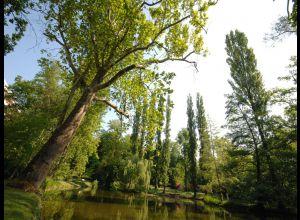 植物园(Jardin des Plantes)