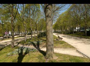 雅各宾梅花形林荫道(Promenade Quinconces des Jacobins)