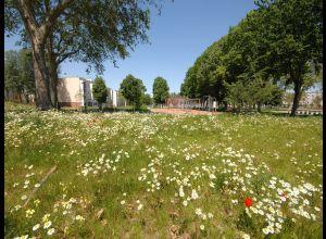 Glonnières公园